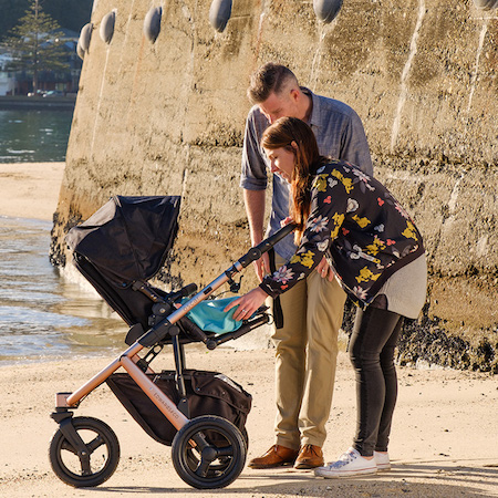 Edwards and co - NZ prams